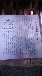 DSC_0911.JPG